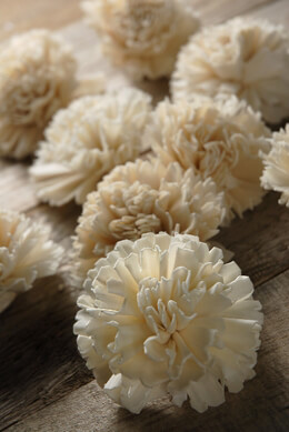 Sola Flower Carnations  (12 flowers)