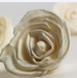"Sola Flowers Cream White Sola 2.5"" Roses (15 flowers)"