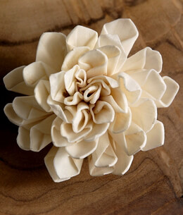 Sola Flowers Folded Flower (12 flowers)