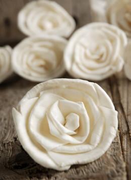 "Sola Flowers 2-2.5"" Roses | 15 flowers"