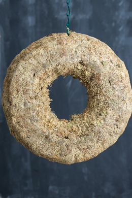 Sphagnum Moss Living Wreath 12 Inch
