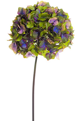 Jewel Tone Green & Purple Hydrangea Stem 10in Wide