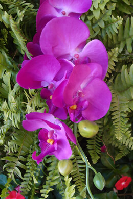 Phalaenopsis Orchid Spray Purple Artificial Hanging Orchid Stem