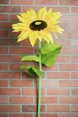 Giant Yellow Sunflower Stem 37in
