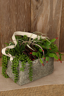 Textured Cement Basket with Cotton Handle