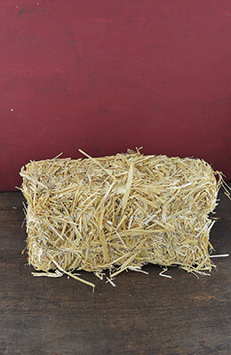 Straw Bale 12in