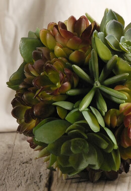Succulent Balls Artificial 7in