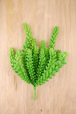 Succulent Bush Sedum 12in