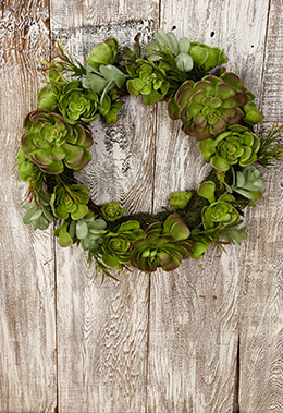 Succulent Wreath 17x4in