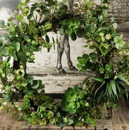 "Succulent Wreath 20"" Natural Touch"