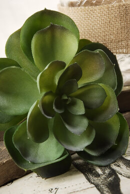 Artificial Succulent 11.5in