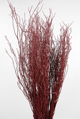 Natural Red Huckleberry Branches  - 40 Branches