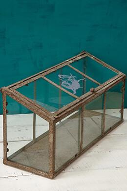 Terrarium Centerpiece 17.75in