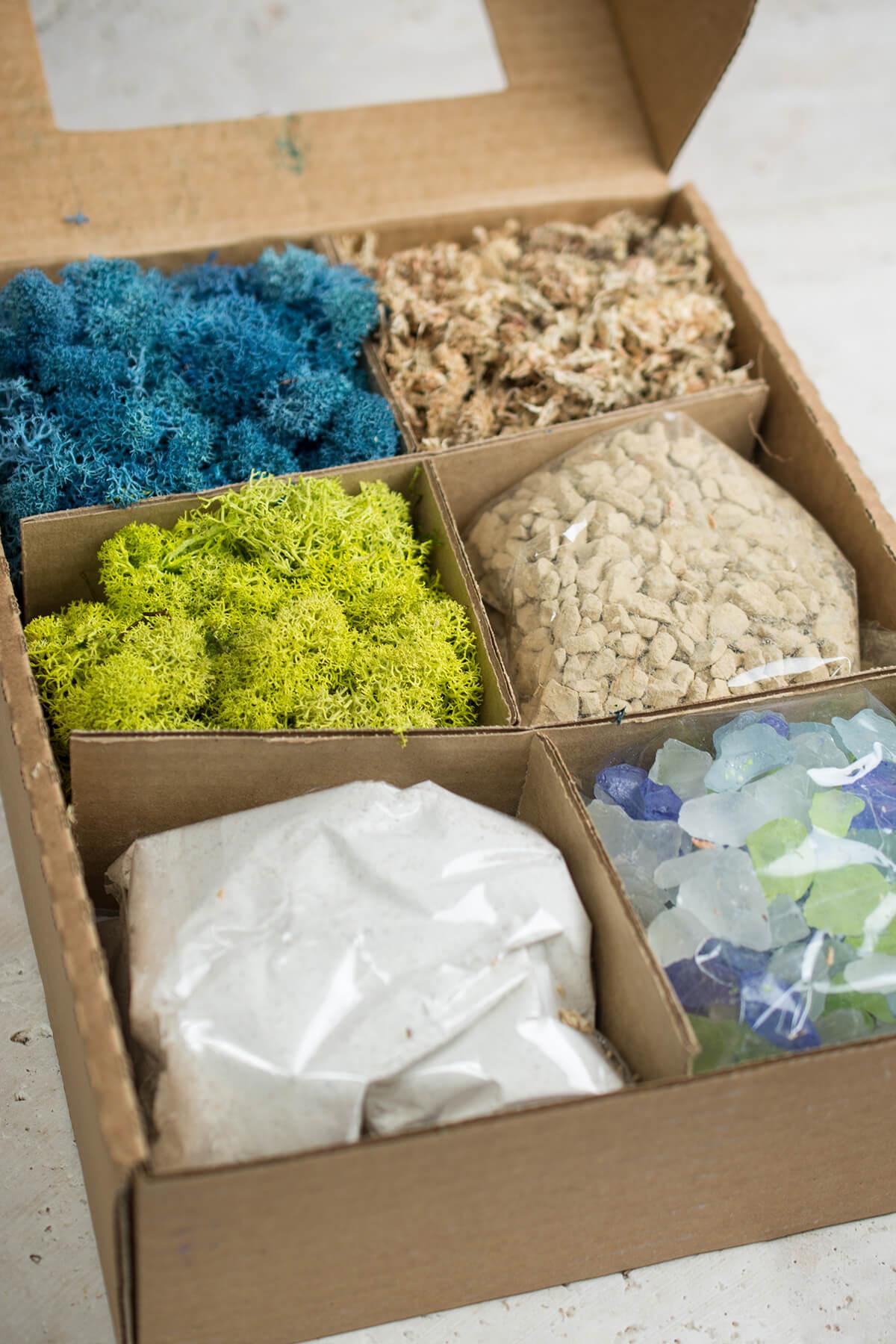 Terrarium Kit with Sand, Gravel, Mosses, & Sea Glass