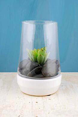 Terrarium Vase 8.5in