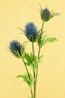 Thistle Flower Blue 32.5in