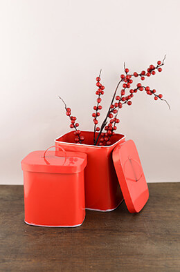Tin Canisters Red (Set of 2)