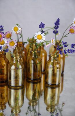 Bottles Tiny Tincture Brown (Set of 12)