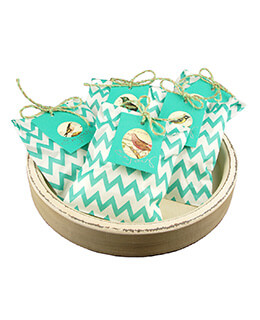 Treat Bags Chevron Aqua 5x7in (Pack of 100)