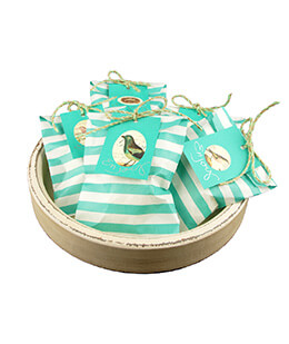 Treat Bags Stripe Aqua 5x7in (Pack of 100)
