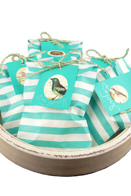 Treat Bags Stripe Aqua 5x7in (Pack of 100)