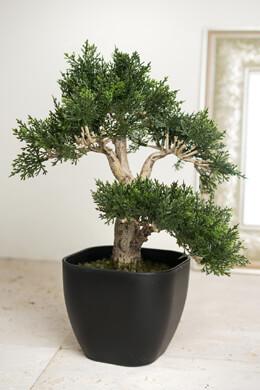 "15"" Artificial Cedar Bonsai Tree w/Container"