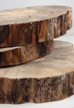 Tree Slabs Round Natural Wood 12-14""