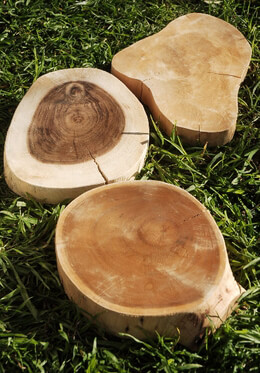 "Tree Slices Reclaimed Wood 9-12"" wide"