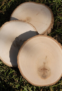 Tree Slices Wood  Round 7-9""