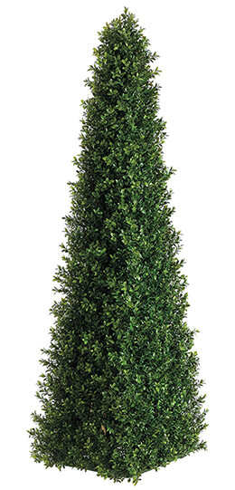Triangular Boxwood Topiary Two Tone Green 4ft