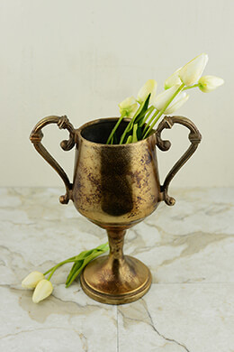 Trophy Vase Gold 10.5x9in