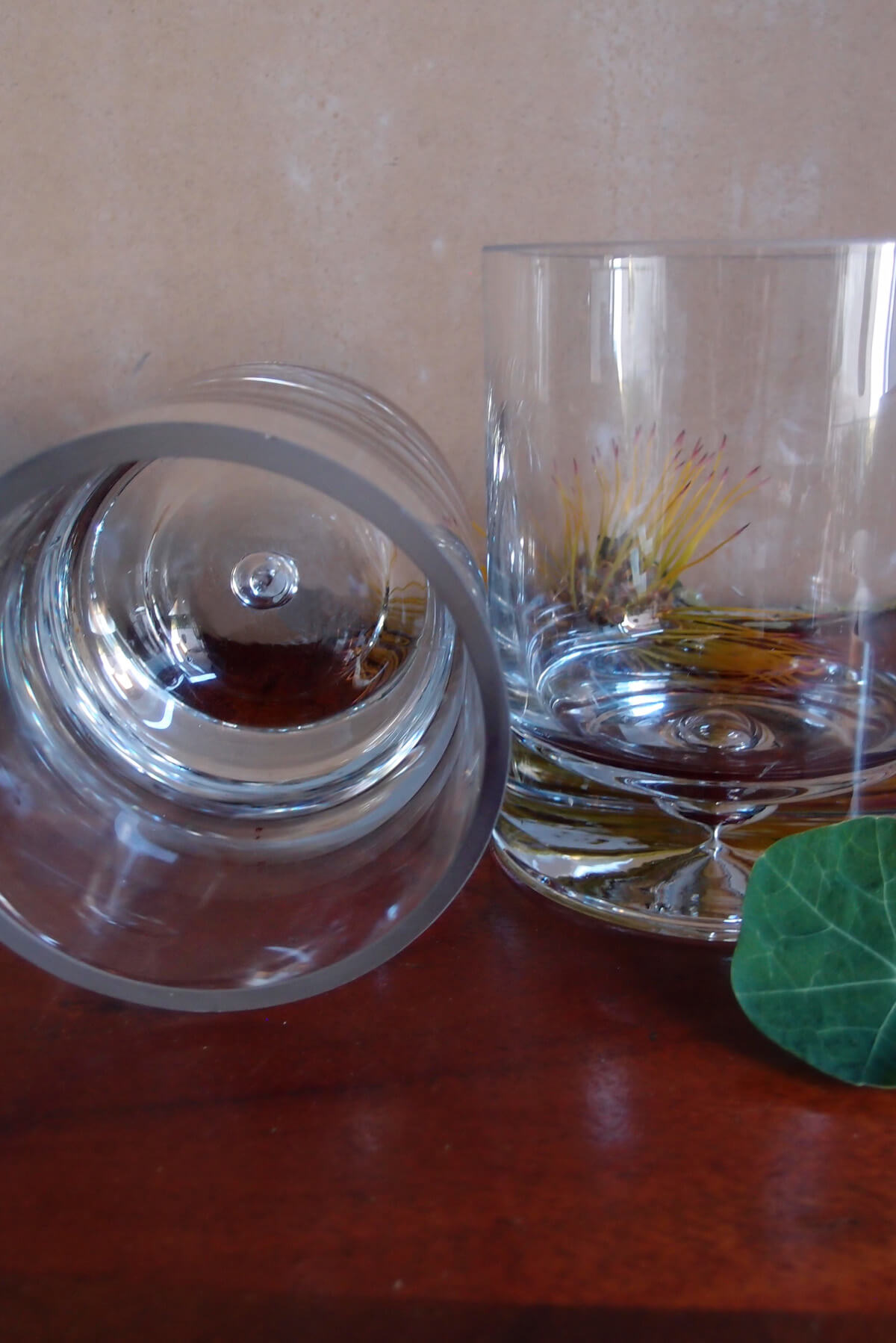 "Thick Glass Cylinder 6"" Vases"