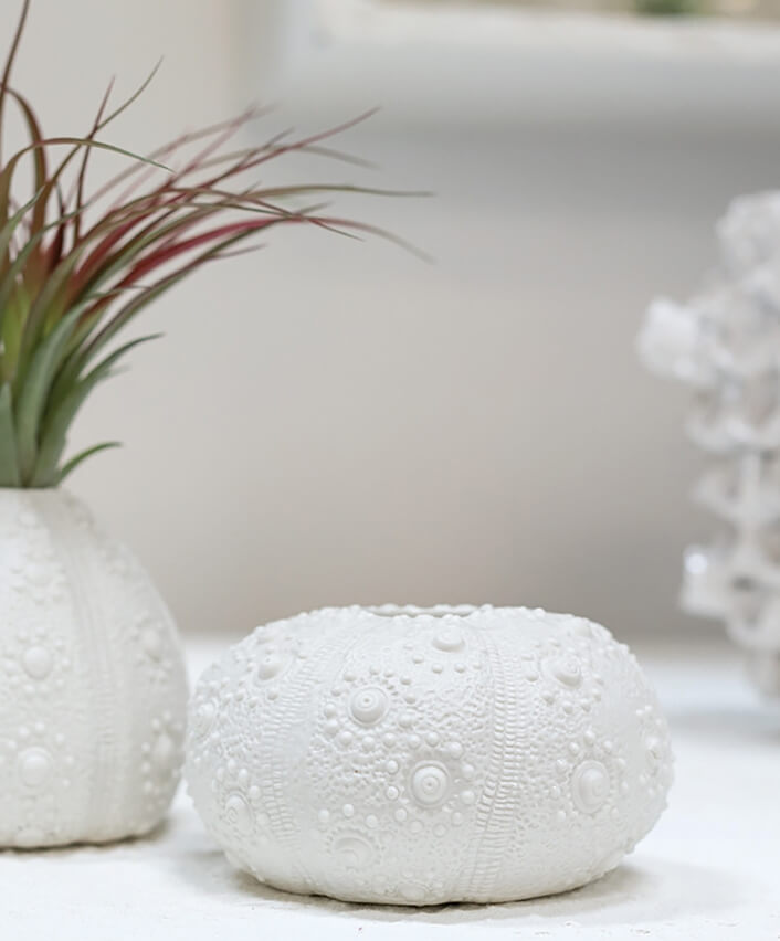 "Rhea Budvase Ceramic Sea Urchin Vase 4.5"""