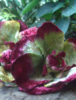 Vintage Velvet Flowers Double Burgundy & Green Blossoms