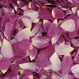 Preserved Rose Petals Violet (5 cups)