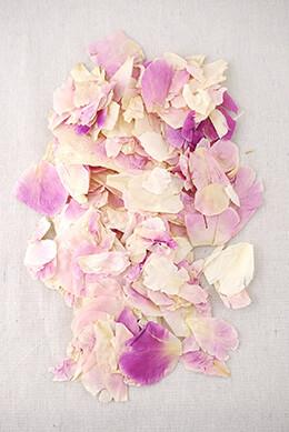Violet Peony Petals Freeze-dried (5 cups)