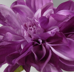 "Violet Purple Silk Dahlias (7"" flower)"