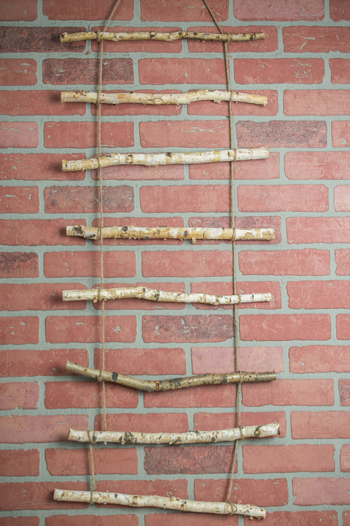 Birch Branch Rustic Rope Ladder