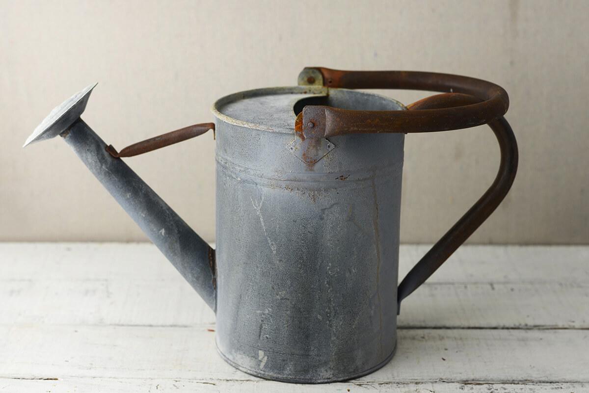 Rustic Watering Can Metal 8in