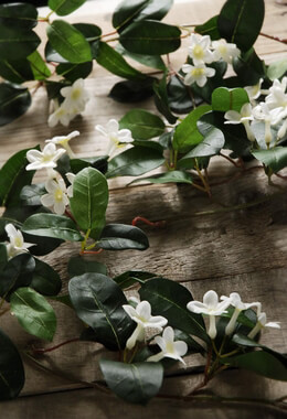 Wedding Garlands 6' Stephanotis Flowers