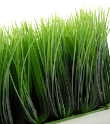 Wheat Grass Mat Artificial 10 5in Square