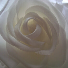 Fabric Rose with Salon Style Clip & Pin White 4in