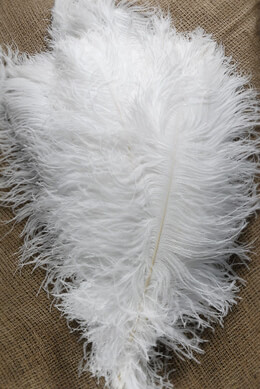 Ostrich Feather Plumes 22-28in - White Second Quality Wing Plumes (1/2 lb)