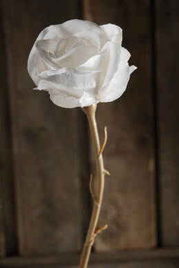 White Silk Roses with White Silk Leaves