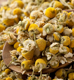 Dried Chamomile Flowers 1lb