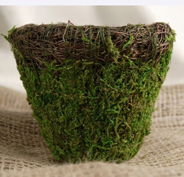 Wicker and Moss Pot with Liner 5in