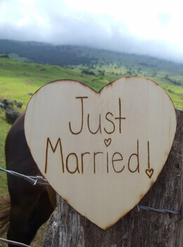 JUST MARRIED Heart Shaped Wood Sign 9in