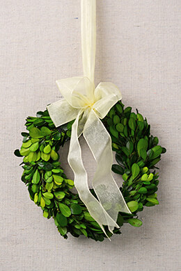 Boxwood Preserved Wreath 6""