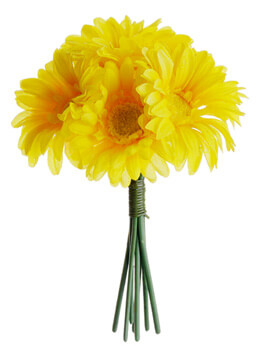 Yellow Gerbera Daisy Bouquet