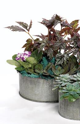 "Corrugated Zinc Pot 7.5""x 4""  Norah Bowl"